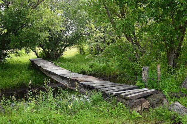 森の中の古い木製の橋