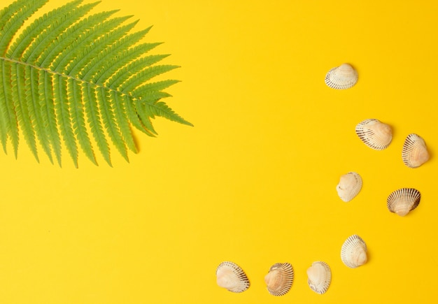 Лист папоротника, раковины на желтом фоне пастель. концепция путешествия, туризм, пляжный курорт. лето. вид сверху, копия пространства