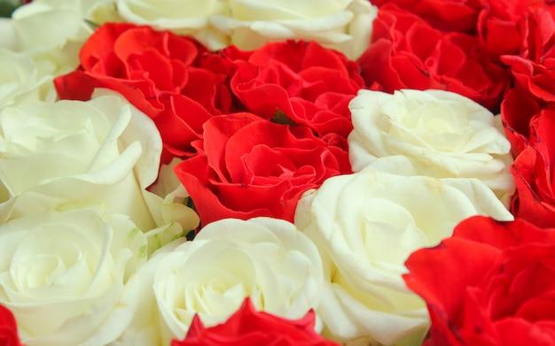 赤と白のバラの花束