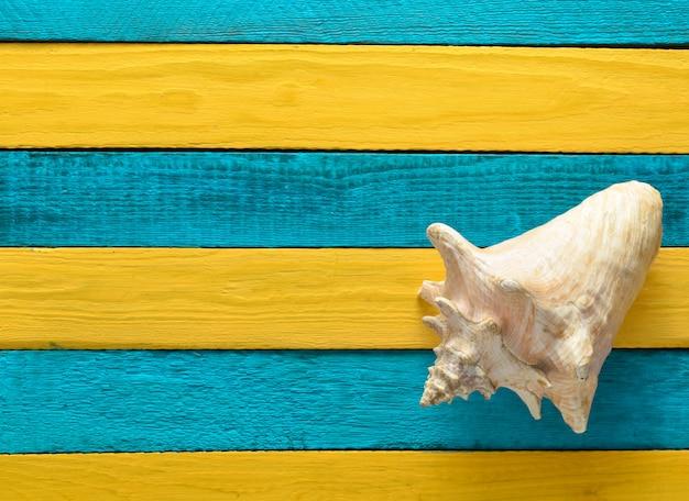 Большая раковина океана на желтых голубых деревянных досках. концепция лета. вид сверху. копировать пространство