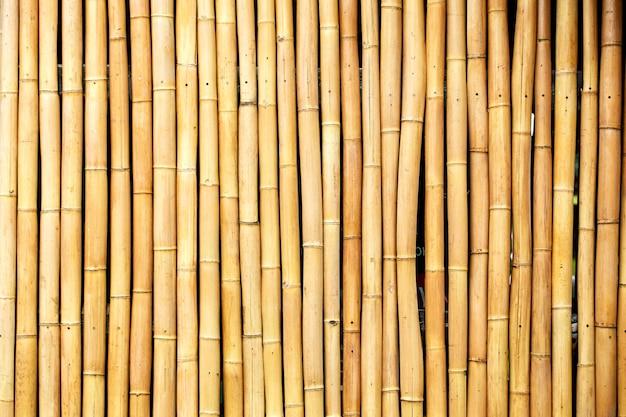Желтые бамбуковые стебли в ряд фон
