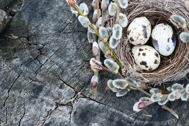Куча ивы, перепелиные яйца и клубок пряжи на деревянных фоне. пасхальные праздники фон