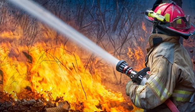 消防士が山火事に水を噴霧