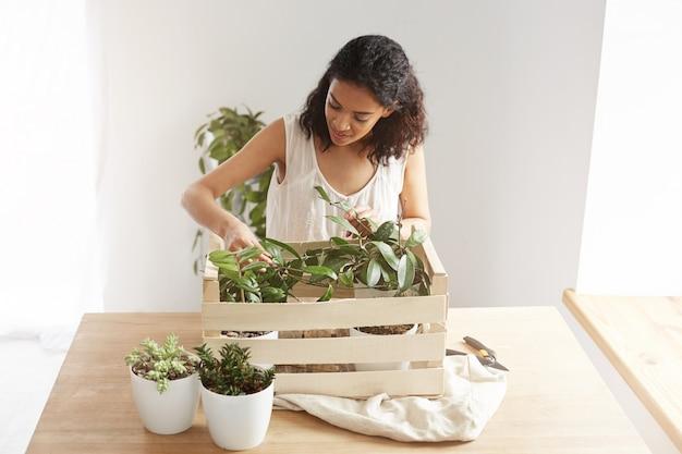 Красивая женщина, улыбаясь, забота о растениях в коробке на рабочем месте
