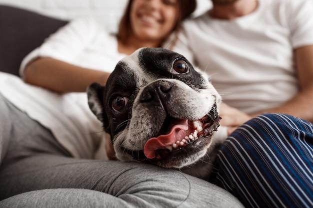 犬が付いているソファーで休んで美しいカップル
