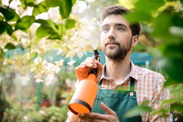 若いハンサムな陽気な庭師笑顔、水遣り、花の世話