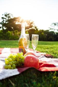 公園で格子縞のフルーツ、シャンパン、脚付きグラスの写真。