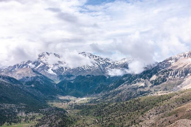 曇りの日に丘の森と雪と曇りの山々。横型