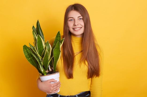Молодая кавказская красивая девушка против желтой стены