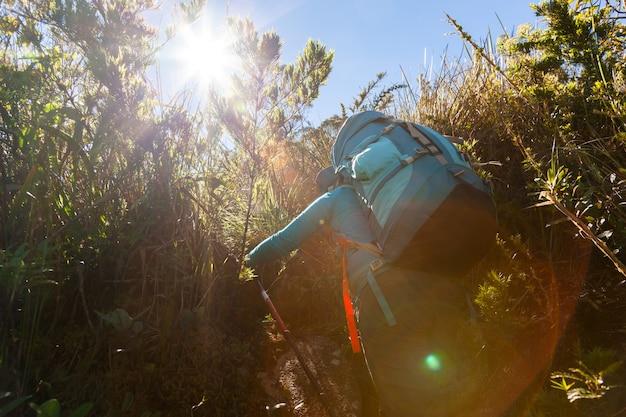 山の風景の中の素晴らしいバックパックで歩く人々-マンティケイラ山脈ブラジルでのトレッキングハイキング