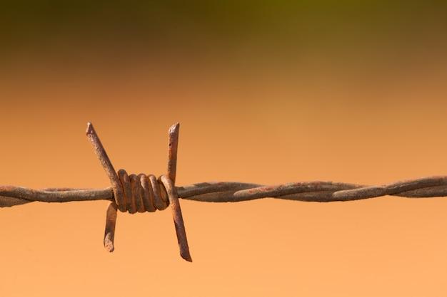 有刺鉄線の詳細-有刺鉄線マクロ