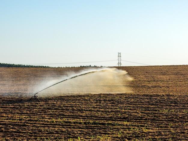 Ирригация посадки сахарного тростника в бразилии