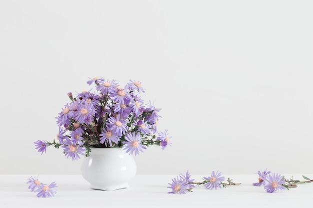 Астер амелус букет в керамической вазе на белом фоне