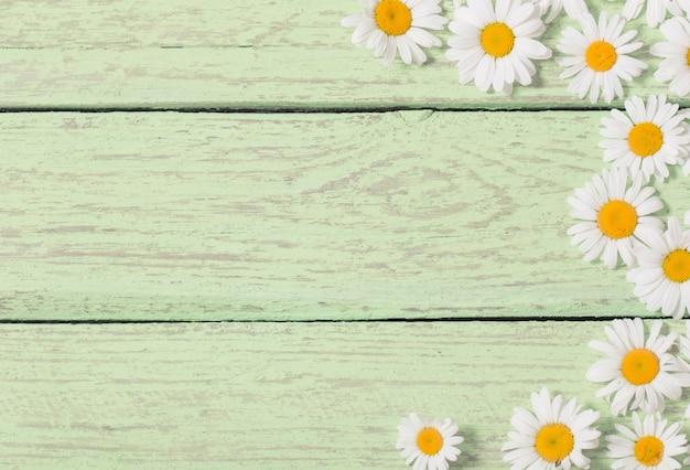 緑の木造空間上のカモミールの花