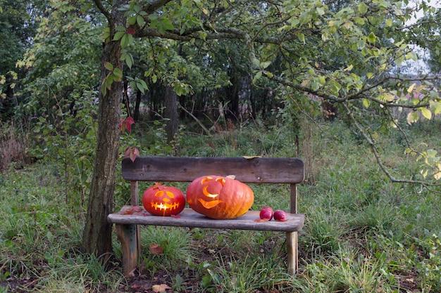 木製のベンチにハロウィンのカボチャ