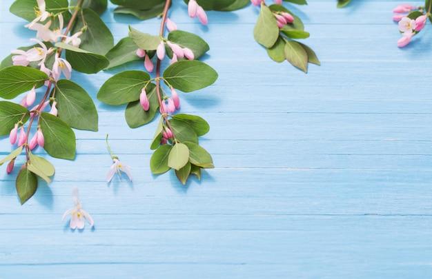 Ветки куста с розовыми цветами на деревянном фоне