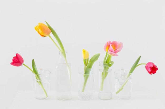 Тюльпаны в стеклянных бутылках