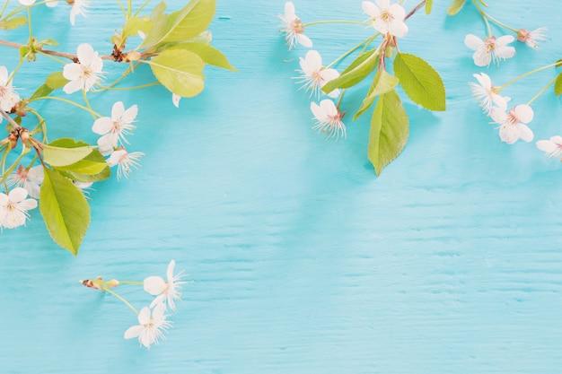 Белые весенние цветы на синем деревянном столе