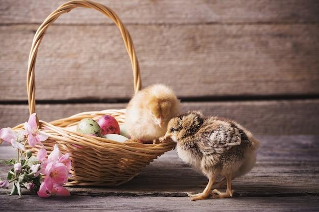 Цыпленок и пасхальное яйцо на фоне старых деревянных