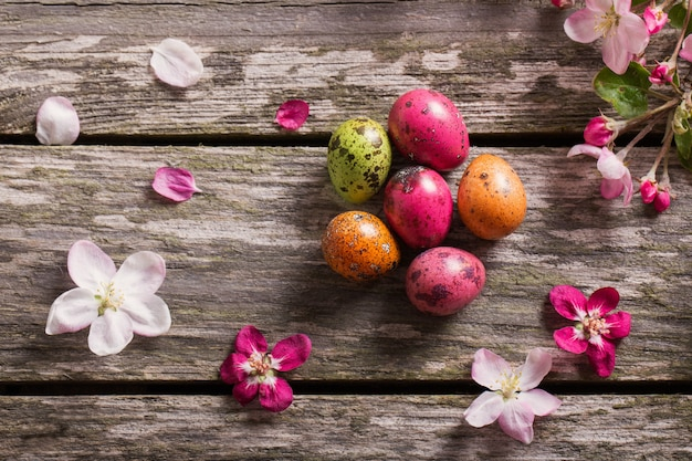 Пасхальные яйца с цветами яблони на деревянном фоне
