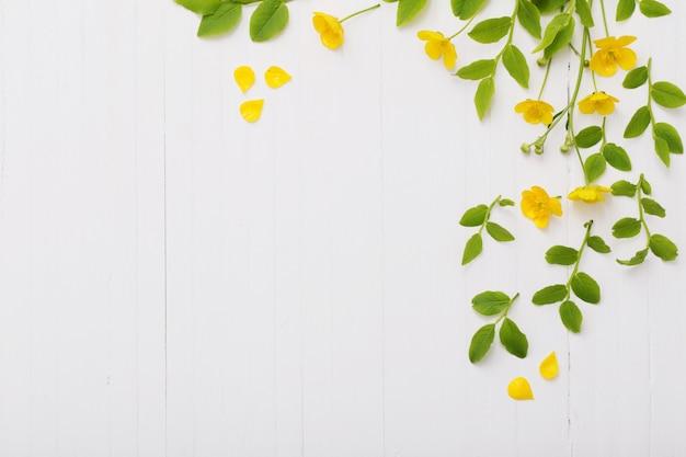 Цветы и листья на белом фоне деревянные