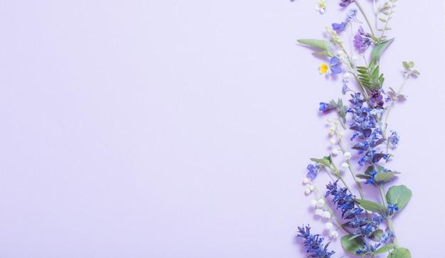青の美しい夏の花