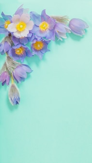 緑の紙の背景に紫の花を春します。