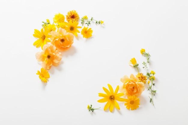 白い壁に黄色の花