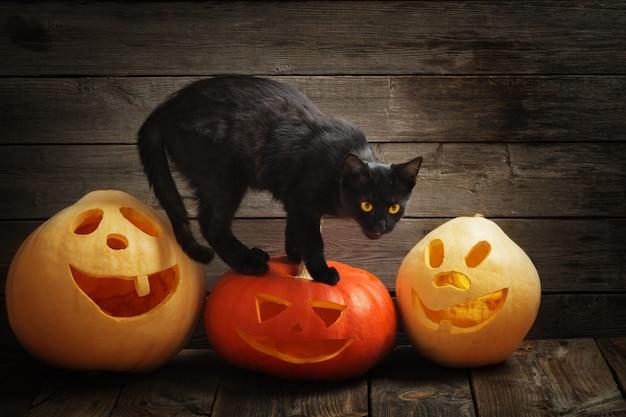 ハロウィーンのカボチャと木製の背景に黒い猫