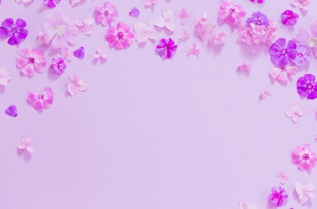 紙の背景に夏の花