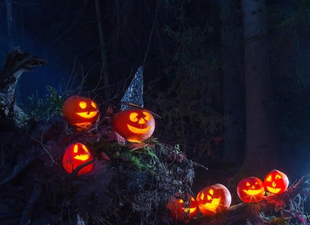 森の中のハロウィンのカボチャ