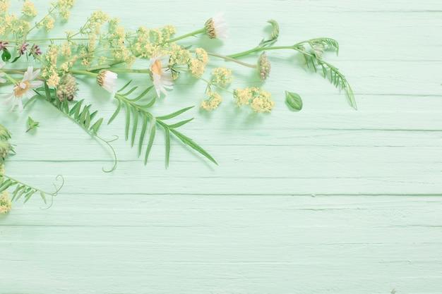 緑の木製の背景の野生の花