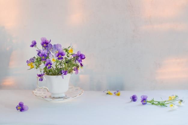 Виола цветы в белой чашке на белом фоне