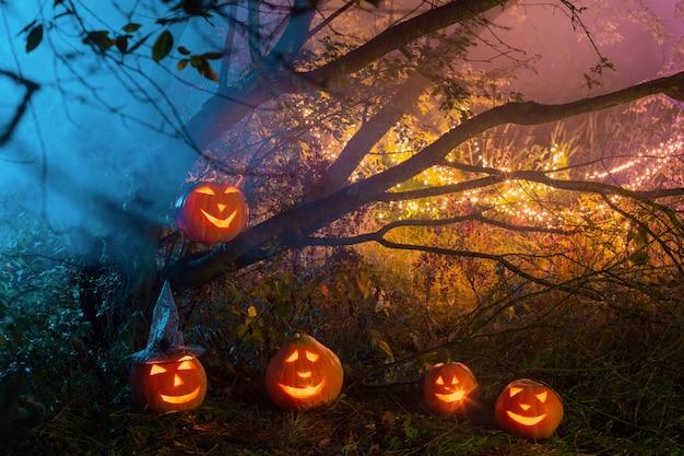 Хэллоуин тыква в ночном лесу