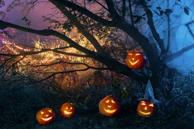 夜の謎の森のハロウィンかぼちゃ
