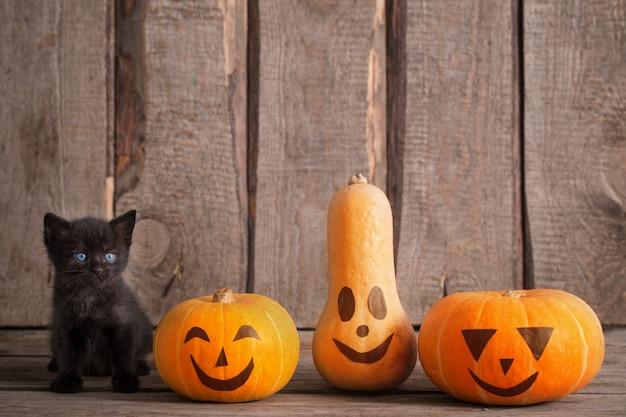ハロウィーンのカボチャと黒い小さな猫