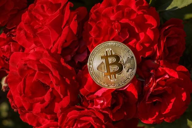 Тонкая золотая монета биткойна ложится на цветы розы. большой золотой биткойн был расположен на цветке красной розы. на цветущую красную розу была положена золотая монета биткойн.