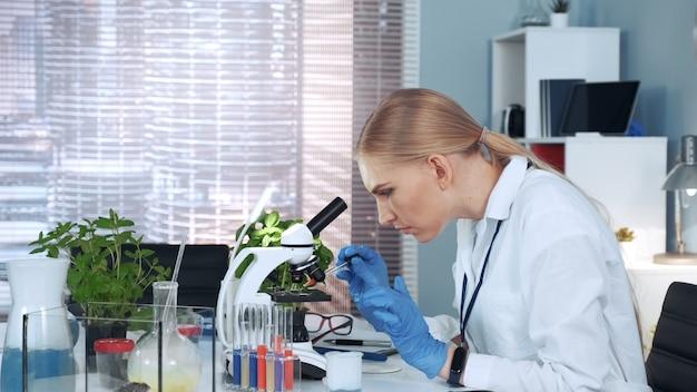 Женщина-исследователь сбрасывает образец на предметное стекло микроскопа и изучает его