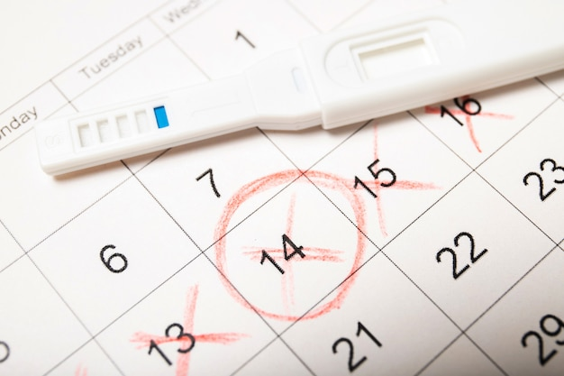 Календарь и тест на беременность крупным планом