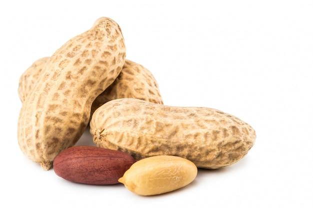 白い背景で隔離のピーナッツ。閉じる