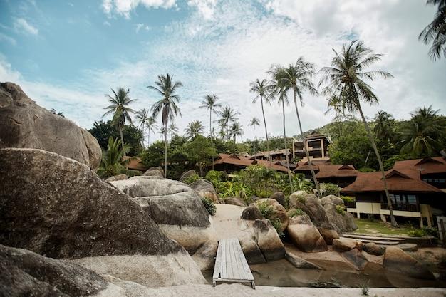 Тропический курорт с кокосовыми пальмами, огромными камнями и золотым песком, вид в перспективе. концепция летних путешествий
