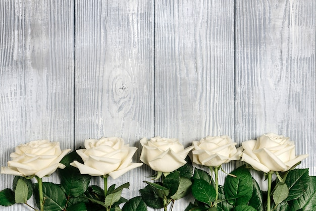 Белые розы лежат на краю светлого деревянного фона