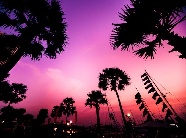 マリーナベイの美しい夕焼け空。ヨットやモーターボートで港の景色。海に沈む夕日。