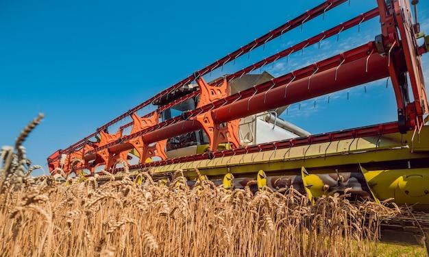 麦畑での行動のコンバイン