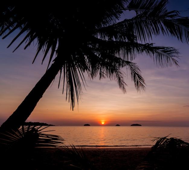 熱帯のビーチで美しい夕日。空と海