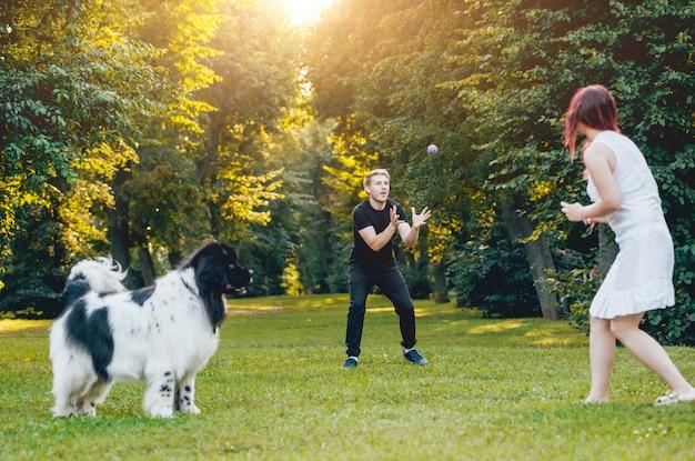 Собака ньюфаундленда играет с мужчиной и женщиной в парке