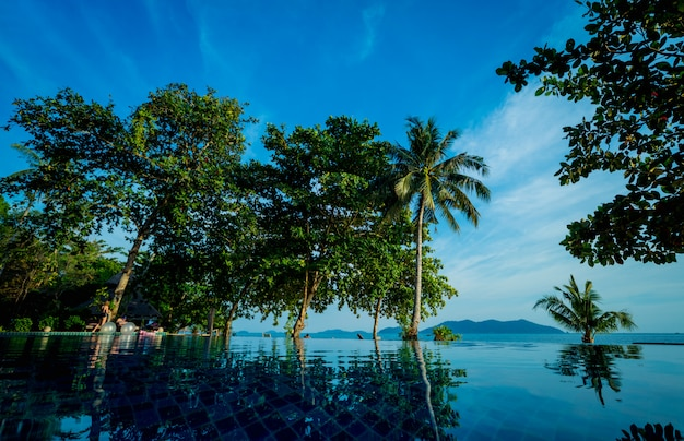 Бассейн на экзотическом тропическом курорте. экзотический сад.