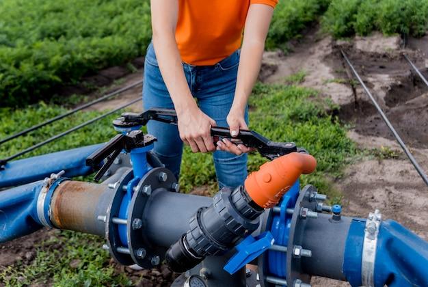 点滴灌漑システム。若いニンジン畑で使用されている節水点滴灌漑システム。労働者が蛇口を開く