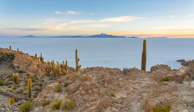 ボリビアウユニ塩湖、インカワシ島