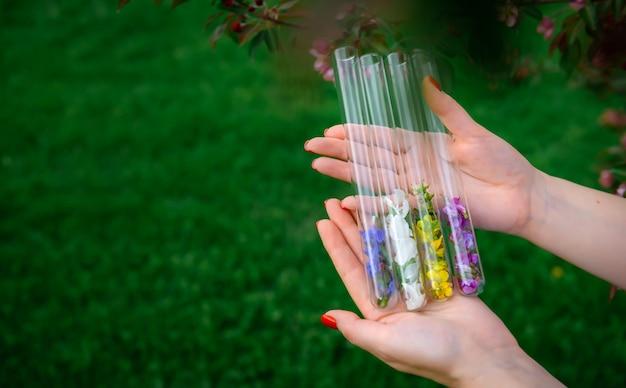 女性の手に多色の花びらを持つガラス試験管